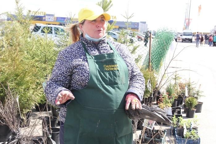 В Омске у «Континента» открылась ярмарка для садоводов (ФОТО)